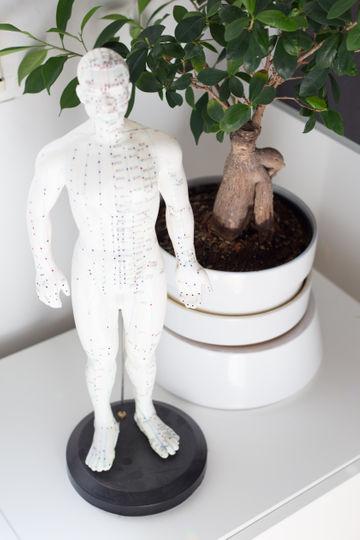 Modellfigur der Akupunkturpunkte des Körpers